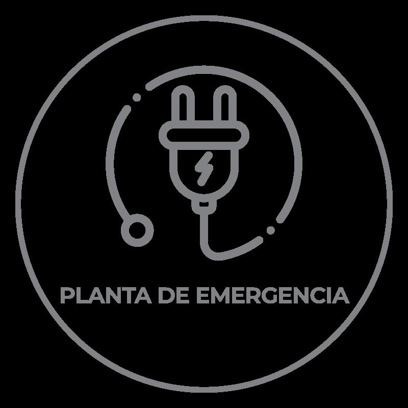 ameniti-planta-emergencia