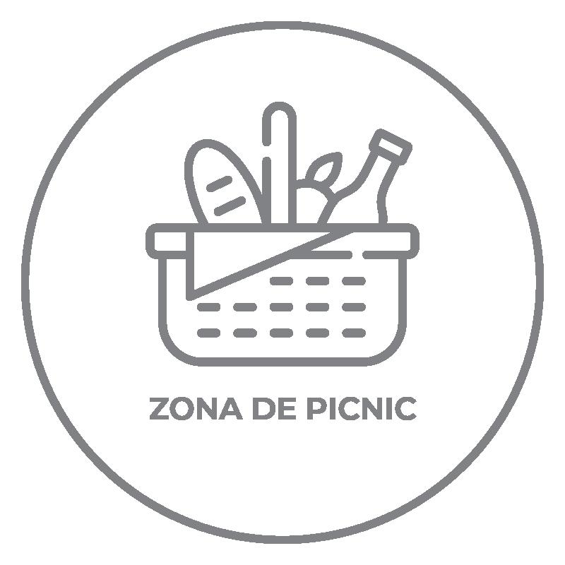 ameniti-zona-picnic